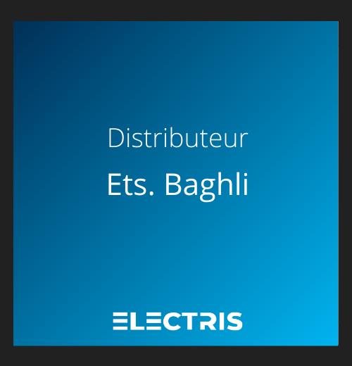 logo baghli