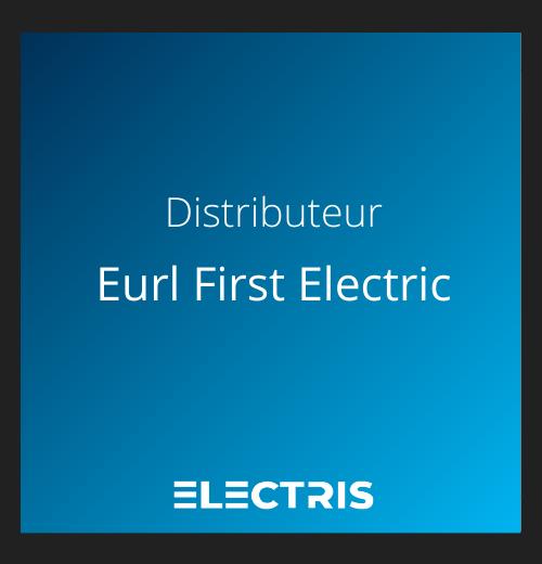 Logo eurl first electric